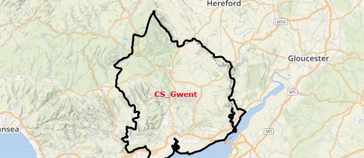 Newport Gwent